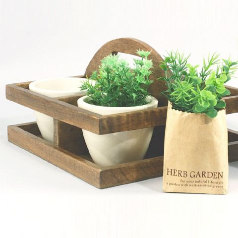 Cream Plant Pots in Wooden Carry Holder
